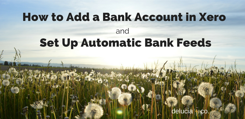 How to Add a Bank Account in Xero